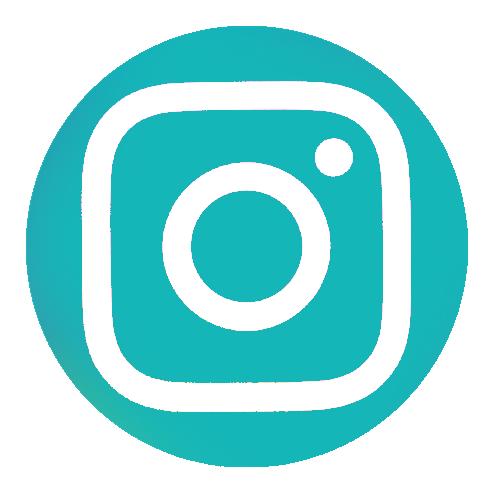 logo instagram aponi