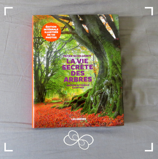 Aponi_Ressourcerie_arbres